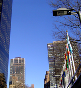 NYC Commission for the United Nations, Consular Corps, and Protocol (UNCCP) Division for International business has a wide variety of free services including: Assistance in accessing appropriate bank institutions, real estate providers, construction companies, and insurance entities. We will also provide the appropriate referrals for determining immigration, customs, visas and other services required for you and your employees